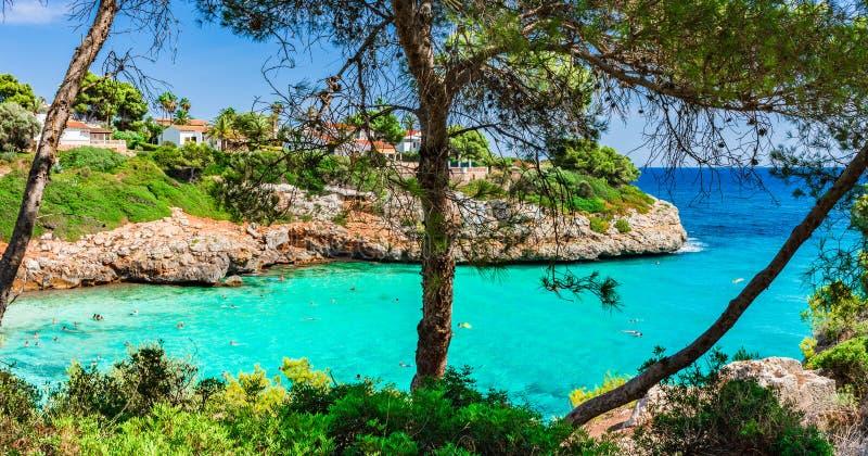美丽的海湾海滩Cala Anguila马略卡西班牙地中海 免版税库存图片