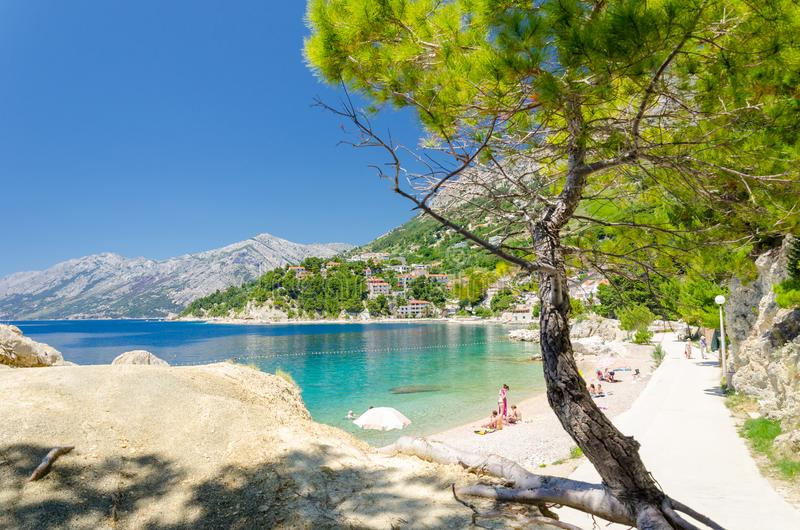 美丽的海滩在Brela在马卡尔斯卡里维埃拉,达尔马提亚,克罗地亚 库存照片