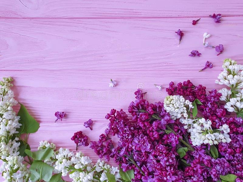 美丽的淡紫色在木背景庆祝框架的花季节性安排 免版税库存照片