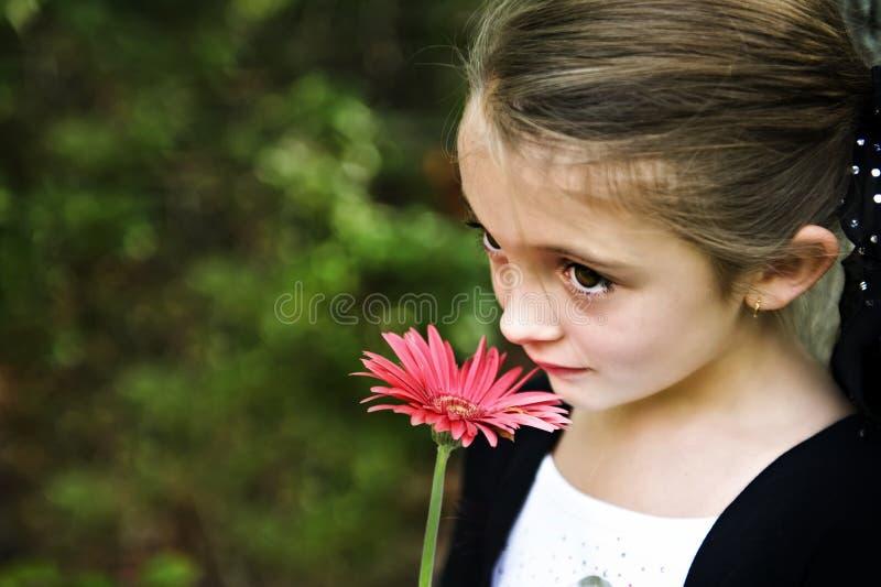 美丽的深色的女孩 库存照片