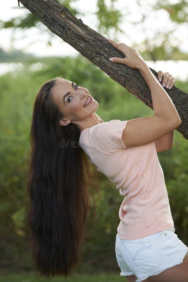 美丽的深色的藏品肢体结构树 免版税图库摄影