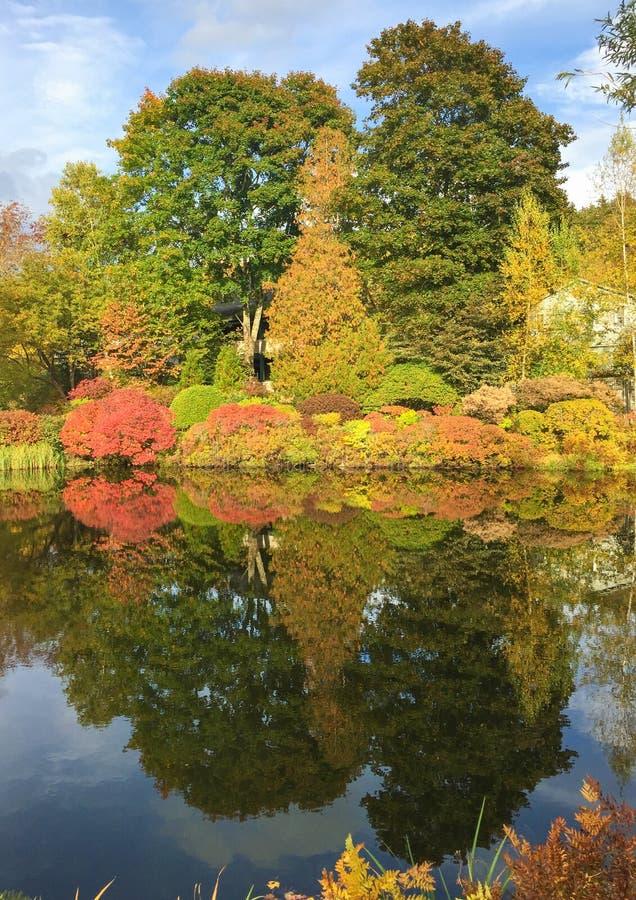 美丽的湖和新英格兰五颜六色的树叶子海的 免版税库存图片