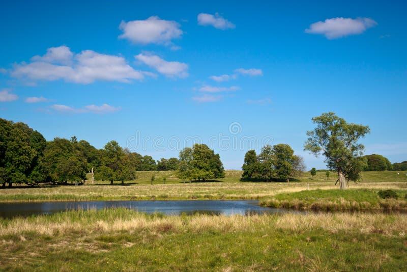 美丽的湖在哥本哈根附近的Dyrehaven 库存图片