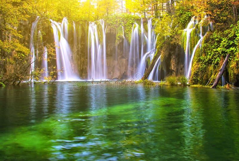 美丽的湖在有国立公园Plitvice瀑布的森林里  库存图片