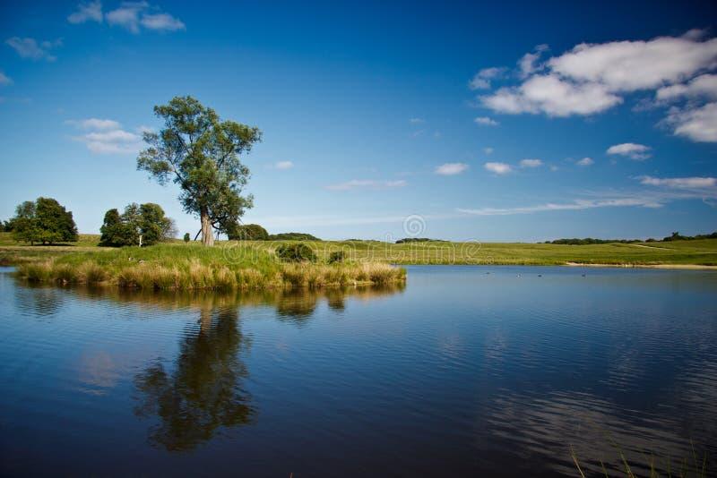美丽的湖在Dyrehave公园,丹麦 图库摄影
