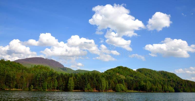 美丽的湖 向量例证