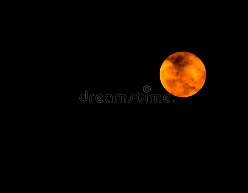 美丽的满月在黑暗的夜,月光在万圣夜夜,没有星的黑暗的天空 害怕的和浪漫天空 免版税图库摄影