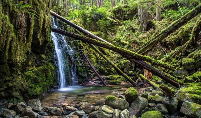 美丽的瀑布不列颠哥伦比亚省 库存图片
