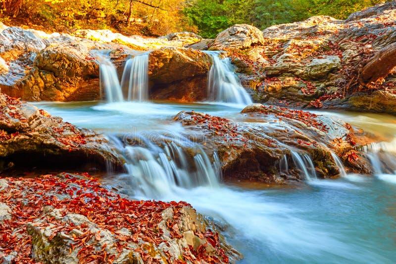 美丽的瀑布在日落的森林里 秋天风景,下落的叶子 免版税库存图片