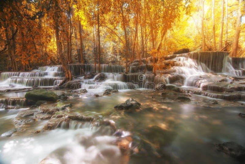 美丽的瀑布在秋天森林里,深森林瀑布,坎市 图库摄影