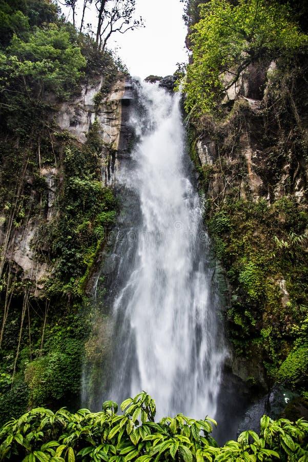 美丽的瀑布在苏门答腊 库存照片
