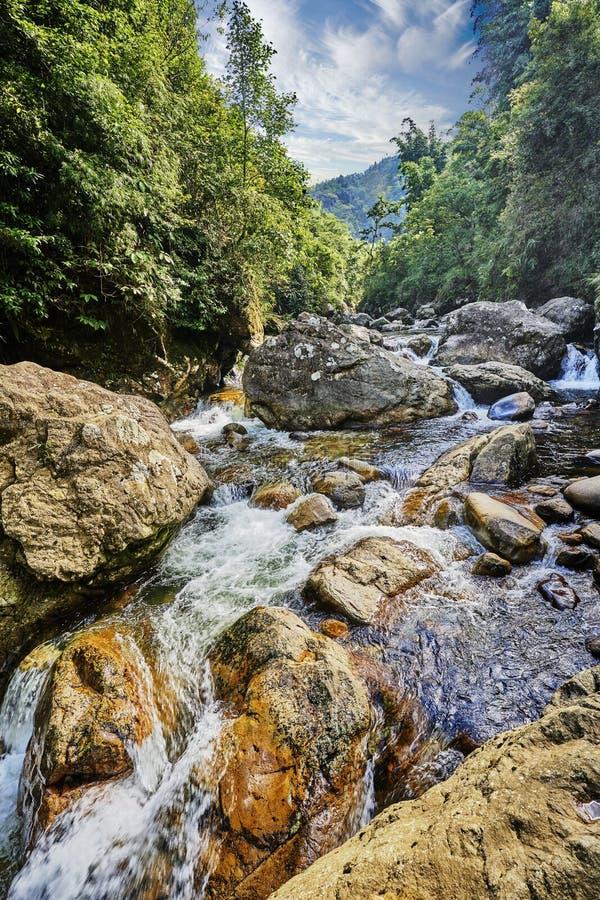 美丽的瀑布在绿色越南亚洲 免版税库存照片