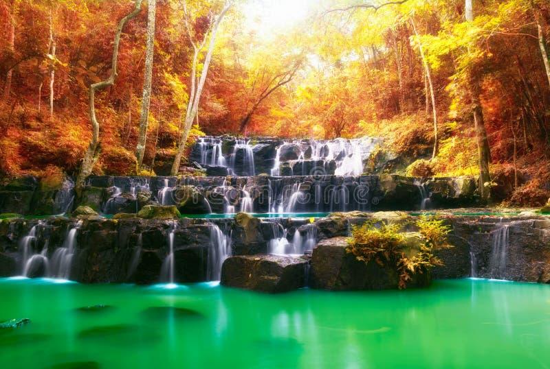 美丽的瀑布秋天、岩石和石头在秋天 免版税库存图片