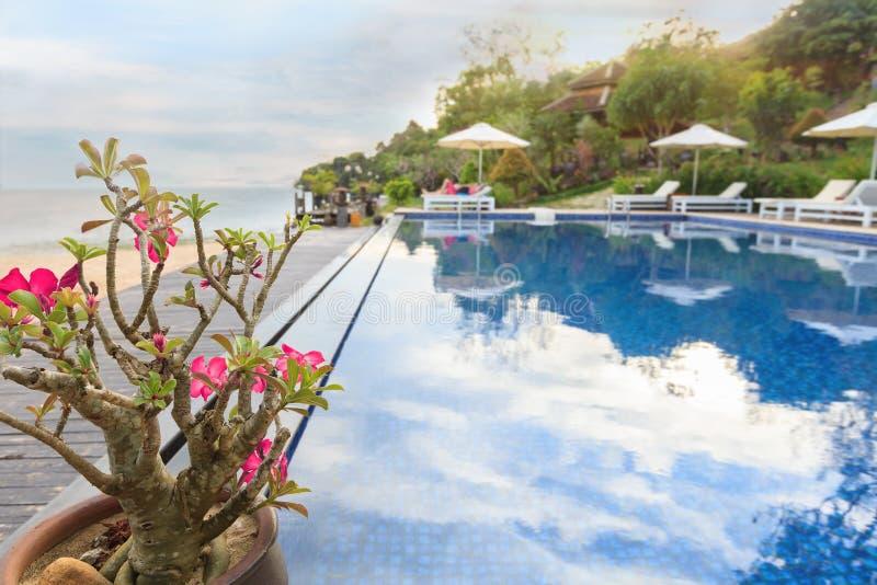 美丽的热带亚洲海滩 免版税图库摄影