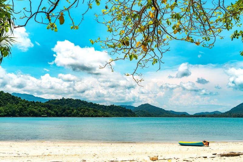 美丽的热带海滩和海在有可可椰子树和天空蔚蓝背景的马尔代夫海岛 免版税库存照片
