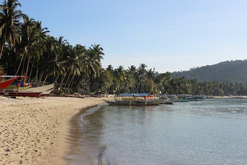 美丽的热带海滩-令人惊讶的巴拉望岛,菲律宾 免版税库存照片
