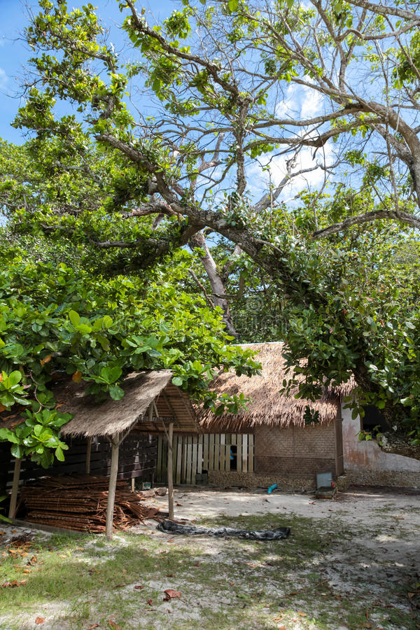 Download 美丽的热带海滩, Similan海岛 库存图片. 图片 包括有 直接, 叶子, 夏天, 阳光, 方式, 春天 - 62533287