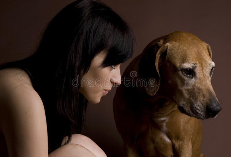美丽的狗rhodesian ridgeback妇女年轻人 免版税库存照片