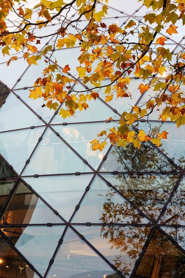 美丽的现代玻璃建筑 荷兰埃因霍温的德·布洛布购物中心 埃因霍温的金秋 库存图片