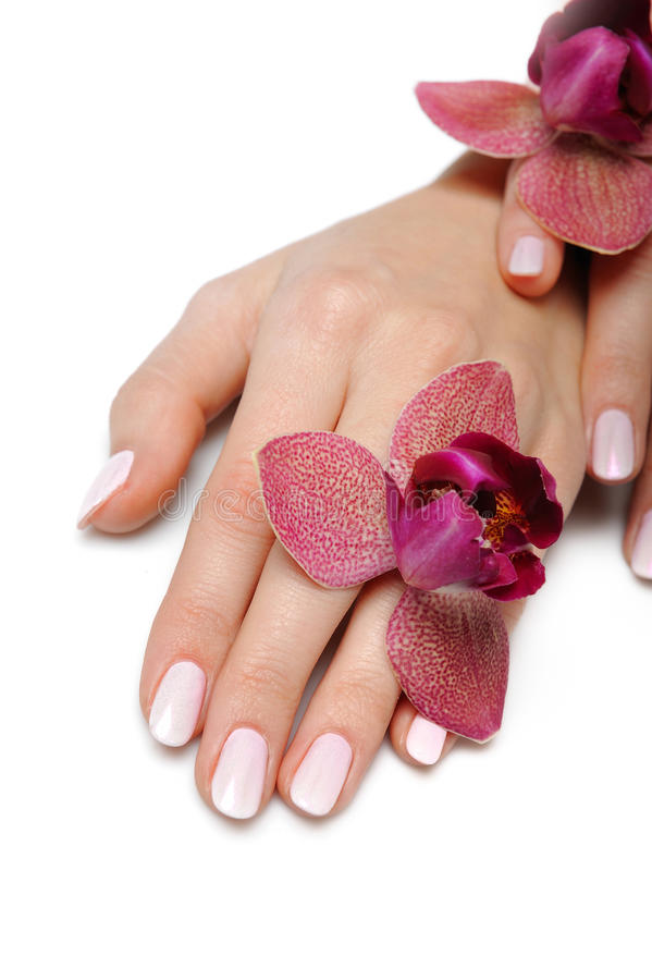 美丽的现有量修指甲钉子理想的粉红&# 免版税库存照片