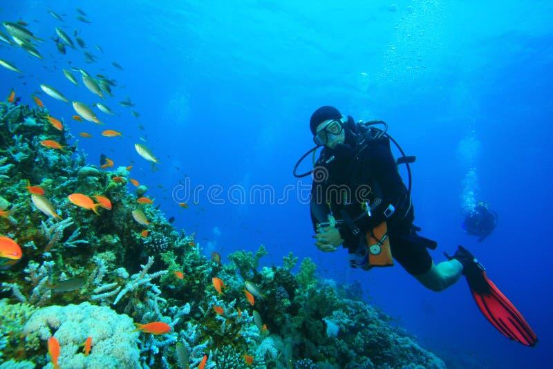 美丽的珊瑚潜水员测试礁石水肺 免版税图库摄影