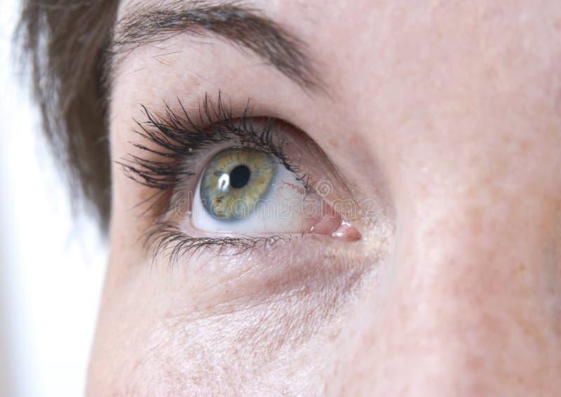 美丽的眼睛女性 库存图片