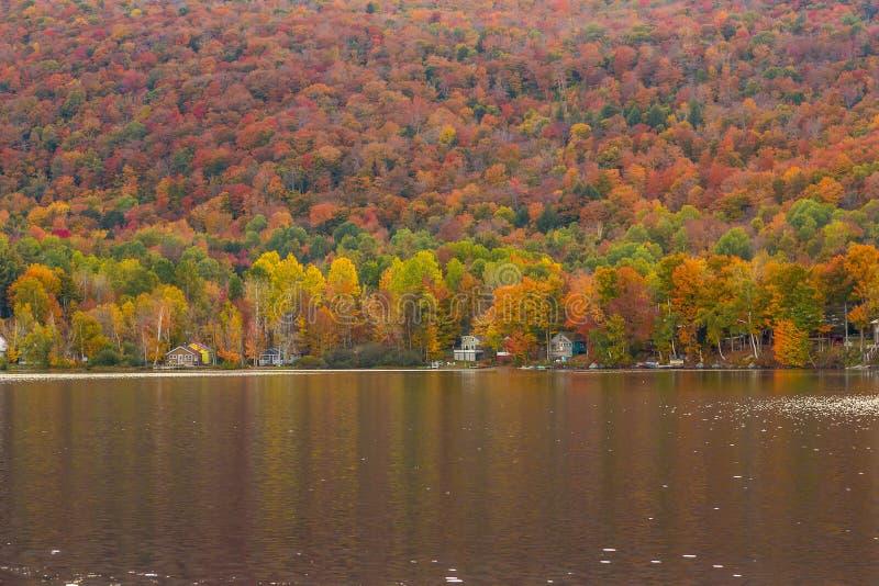 美丽的秋天叶子和客舱在Elmore国家公园, Vermon 免版税库存照片