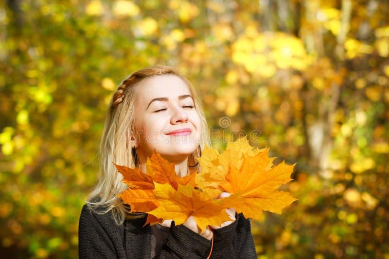 美丽的秋天妇女在金黄公园 库存照片