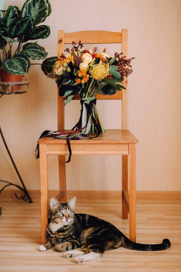 美丽的秋天婚礼花束在下说谎一只逗人喜爱的猫的一把木椅子站立在 免版税库存照片