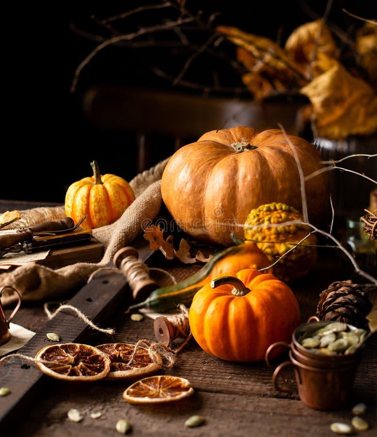 美丽的秋天秋天叶子静物画用被分类的南瓜,花束和分支 库存图片