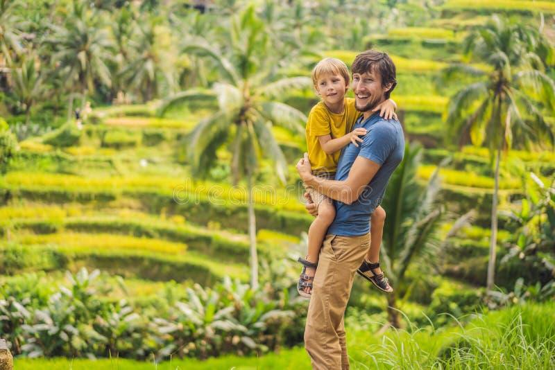 美丽的米大阳台的爸爸和儿子旅客以著名火山为背景在巴厘岛,印度尼西亚旅行 免版税库存图片