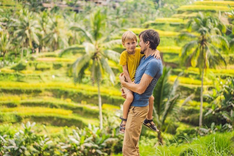 美丽的米大阳台的爸爸和儿子旅客以著名火山为背景在巴厘岛,印度尼西亚旅行 库存图片