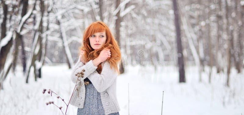 美丽的红发女孩在一个多雪的森林里 库存照片