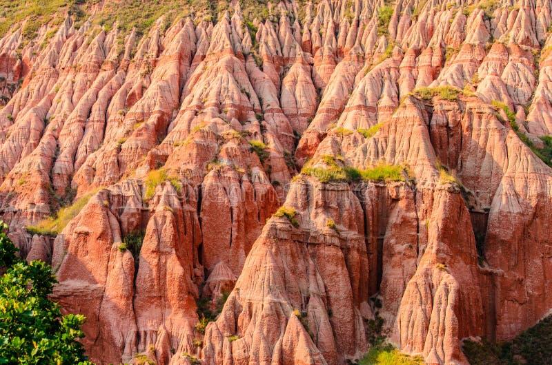 美丽的红色山沟& x28;Rapa Rosie & x29;从喀尔巴阡山脉,罗马尼亚,欧洲 免版税图库摄影