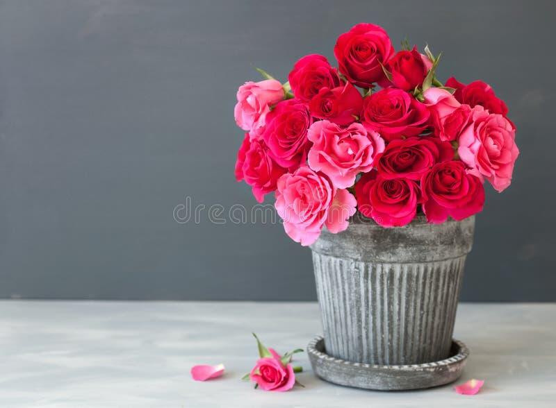 美丽的红色玫瑰开花在花瓶的花束在灰色 免版税库存照片