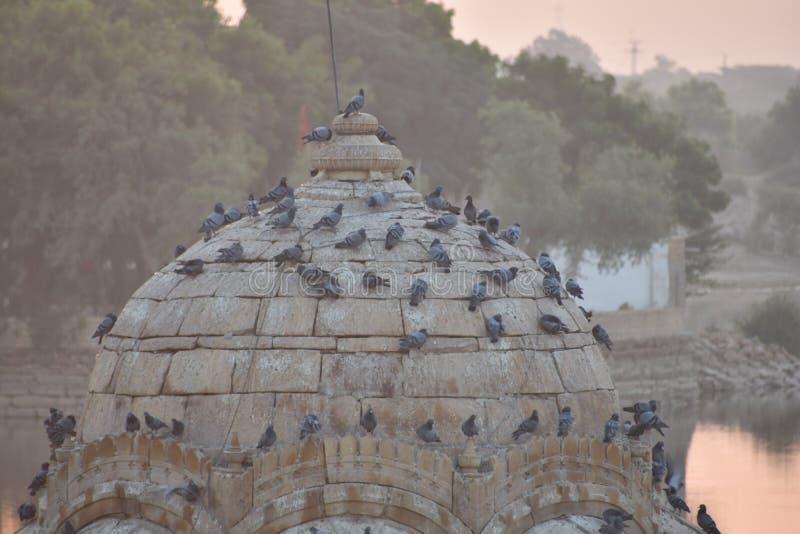 美丽的纪念碑在gadisar湖Jaisalmer 免版税库存照片