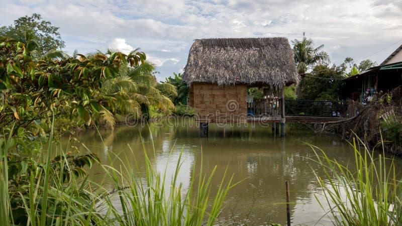 美丽的绿色池塘的越南式树上小屋有椰子和热带植物的-与云彩的好日子 免版税图库摄影