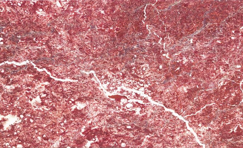 美丽的老红色大理石平板在宫殿 图库摄影