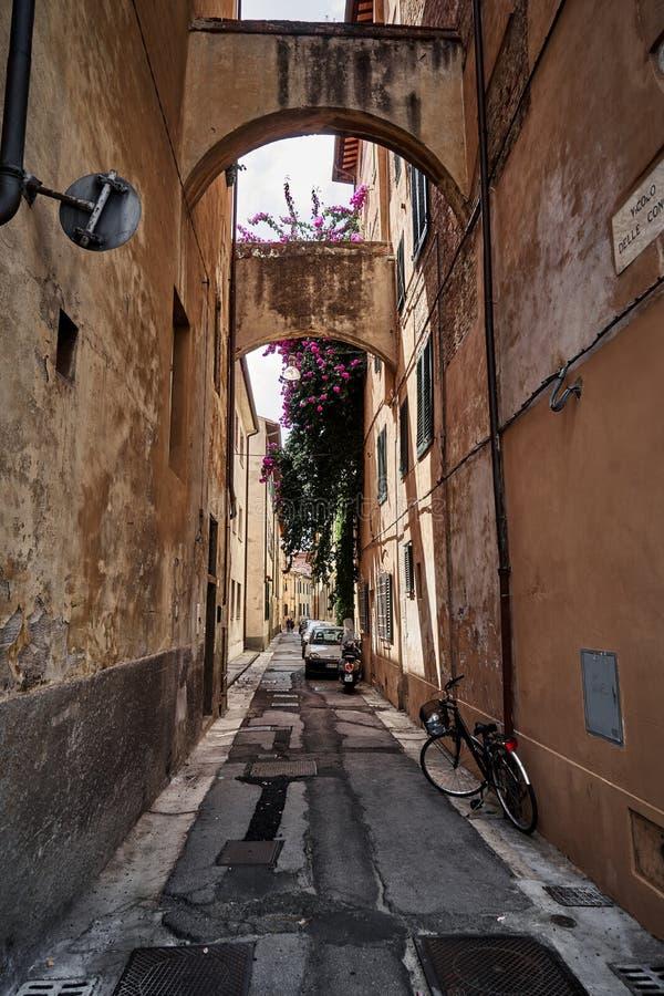美丽的老街道在佛罗伦萨托斯卡纳,意大利 库存图片