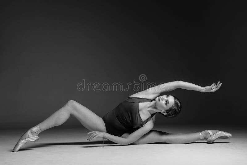 年轻美丽的舞蹈家在演播室摆在 免版税库存照片