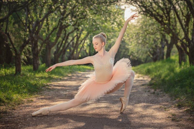 美丽的芭蕾舞女演员画象激动浪漫和嫩 免版税库存图片