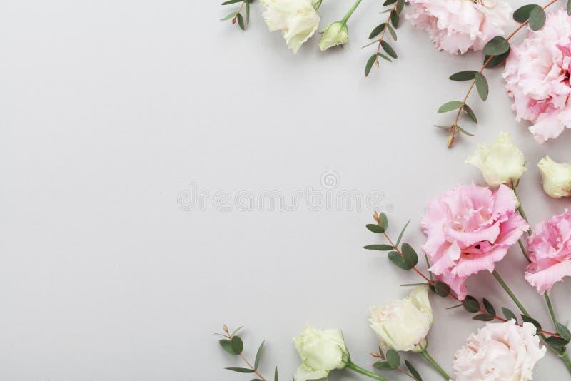 美丽的花和绿色玉树花卉边界在灰色台式视图离开 平的位置构成 免版税库存图片