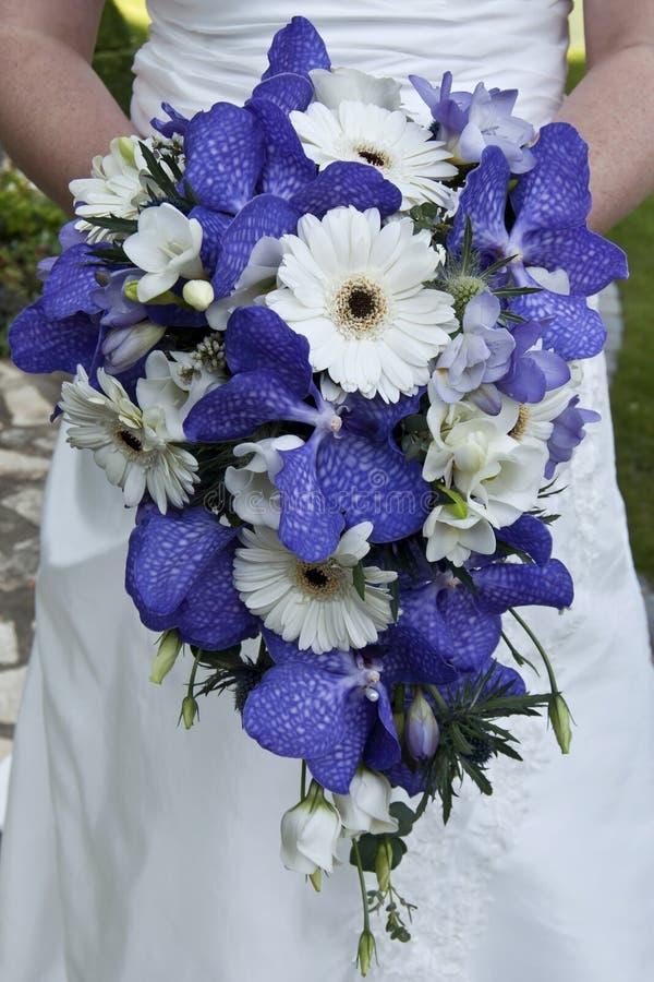 美丽的花束新娘开花藏品 库存图片