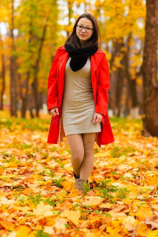 美丽的苗条韩国女孩在秋天森林里 图库摄影