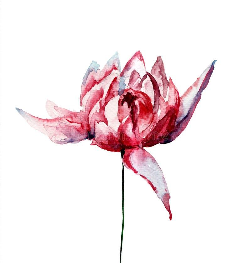 美丽的菊花特写镜头开花照片 向量例证