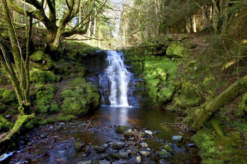 美丽的落下的瀑布, Nant Bwrefwy,上部Blaen-y-Glyn 库存图片