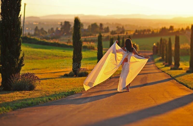 美丽的落日妇女 免版税库存图片