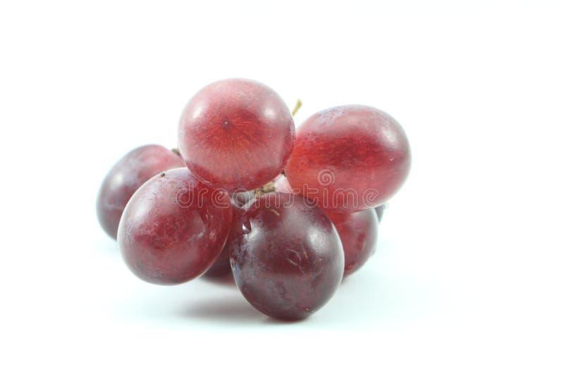 美丽的葡萄 免版税图库摄影