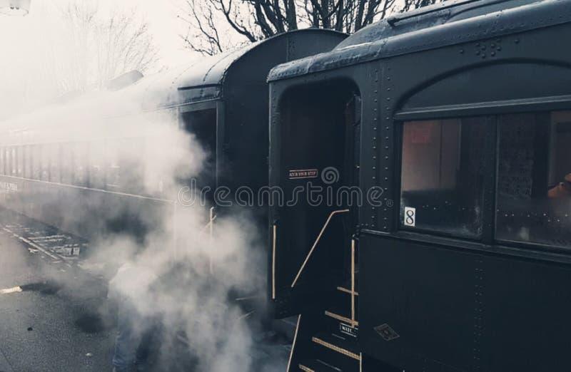 美丽的蒸汽火车 库存照片