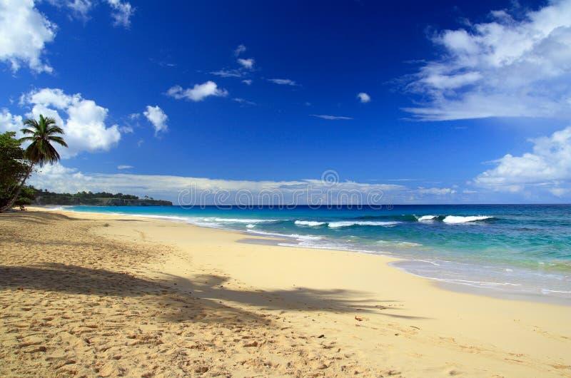 美丽的蓝色加勒比深全景天空 库存图片